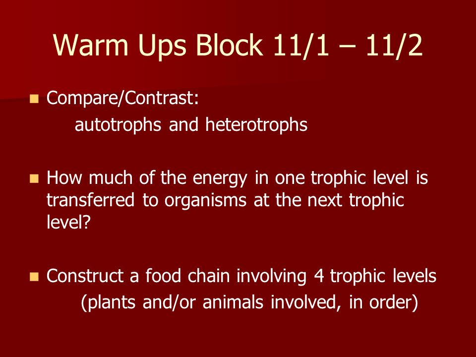 Warm Ups Block 11/1 – 11/2 Compare/Contrast: autotrophs and heterotrophs How much of the energy in one trophic level is transferred to organisms at th