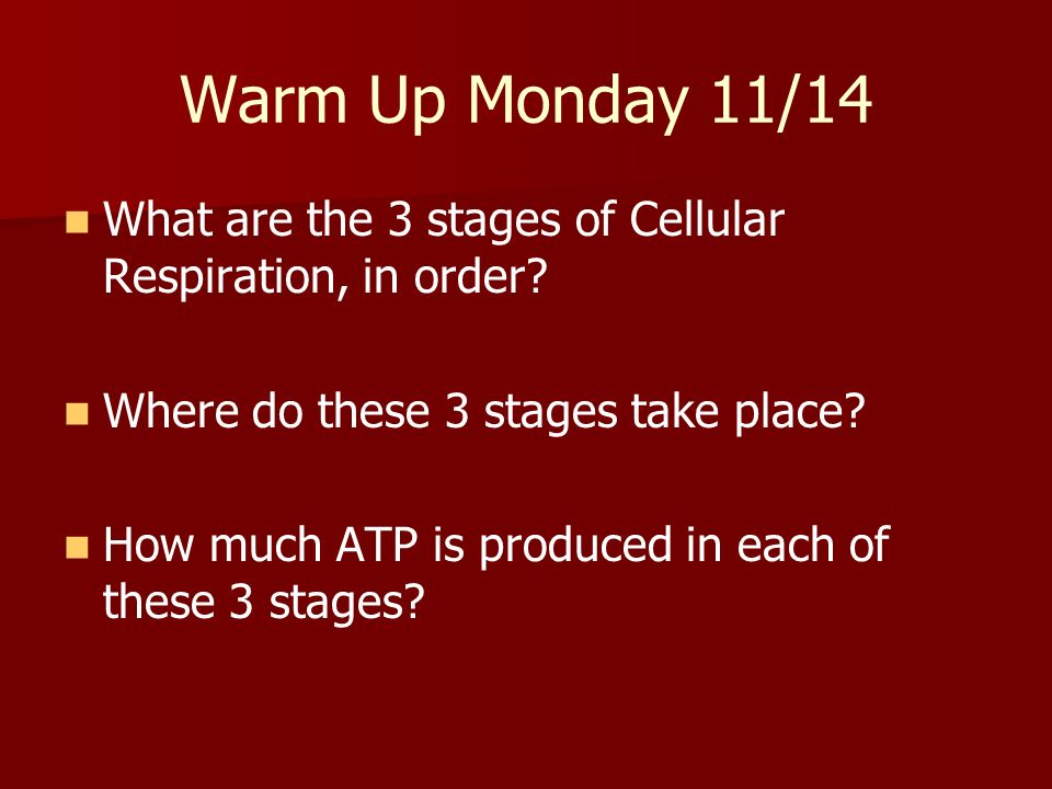 Warm Up Monday 11/14 What are the 3 stages of Cellular Respiration, in order? Where do these 3 stages take place? How much ATP is produced in each of