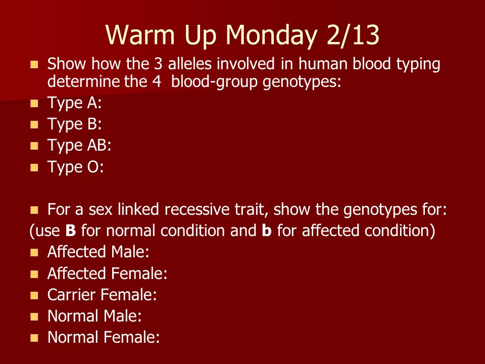 Warm Up Monday 2/13 Show how the 3 alleles involved in human blood typing determine the 4 blood-group genotypes: Type A: Type B: Type AB: Type O: For