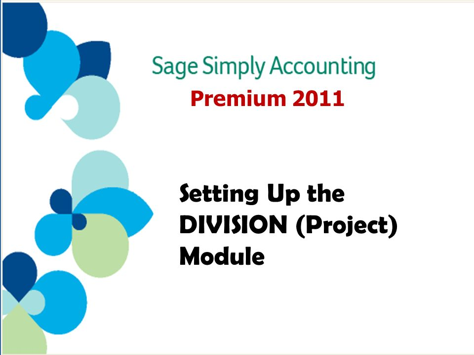 Premium 2011 Setting Up the DIVISION (Project) Module
