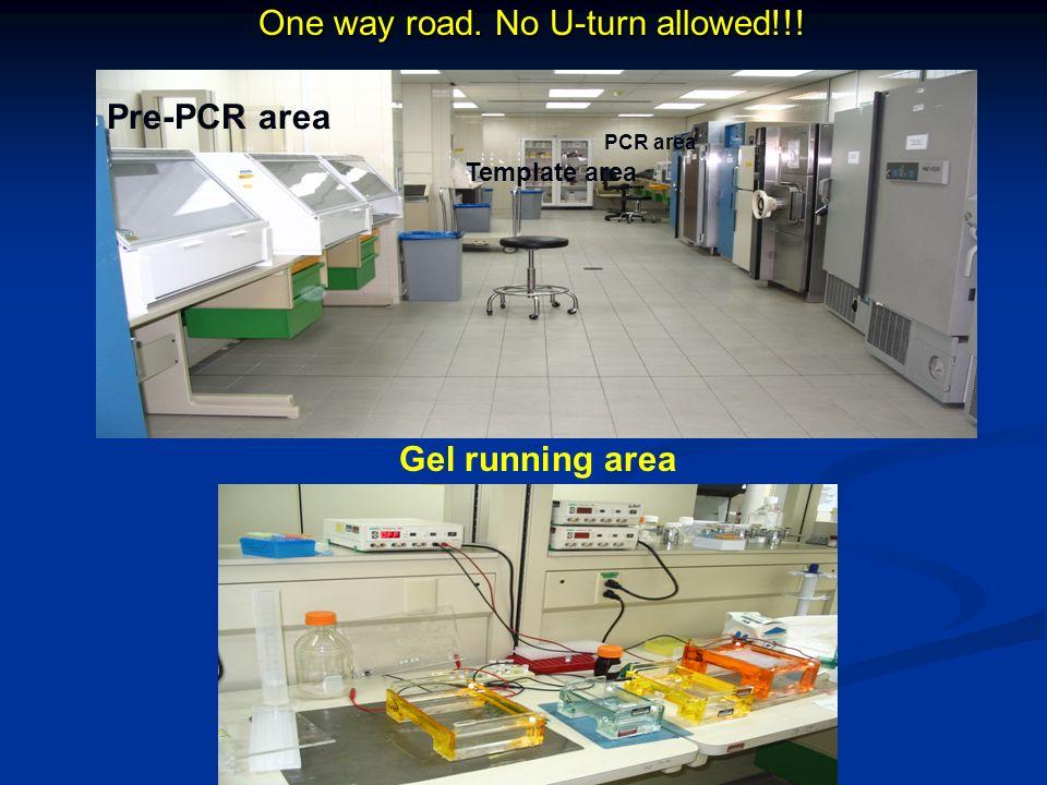 One way road. No U-turn allowed!!! Pre-PCR area PCR area Template area Gel running area