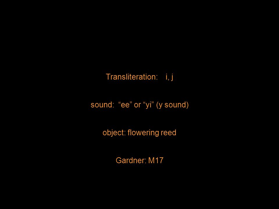 Transliteration: i, j sound: ee or yi (y sound) object: flowering reed Gardner: M17