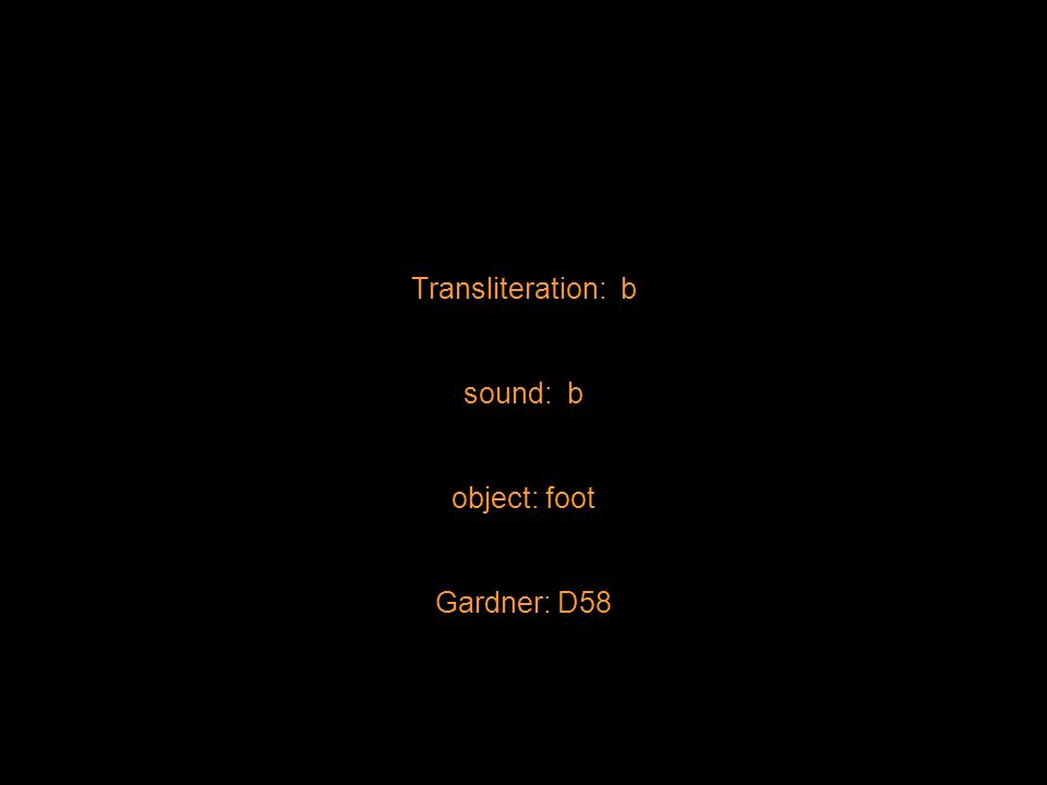 Transliteration: b sound: b object: foot Gardner: D58