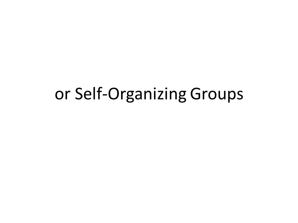 or Self-Organizing Groups