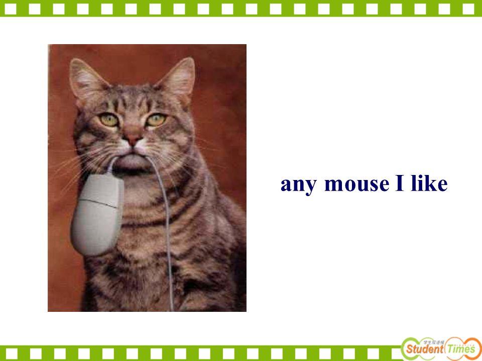 any mouse I like
