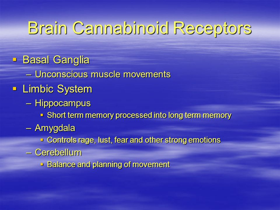 The Brains Marijuana Receptor Sites The Secretary Fight or Flight Coordination