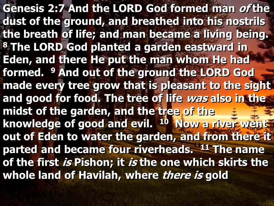 Genesis 2:7 And the LORD God formed man of the dust of the ground, and breathed into his nostrils the breath of life; and man became a living being.
