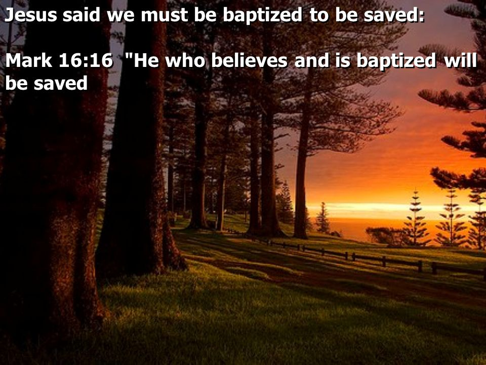 Jesus said we must be baptized to be saved: Mark 16:16 He who believes and is baptized will be saved Jesus said we must be baptized to be saved: Mark 16:16 He who believes and is baptized will be saved