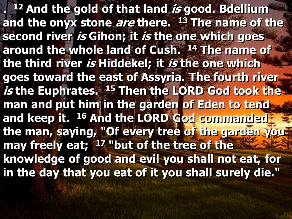 12 And the gold of that land is good.Bdellium and the onyx stone are there.