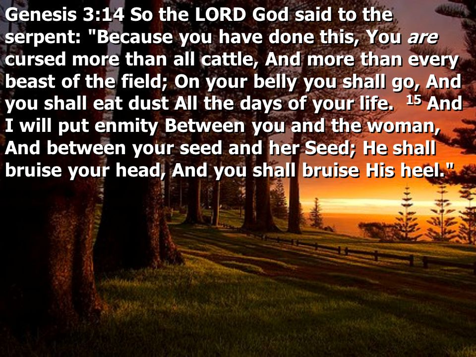 Genesis 3:14 So the LORD God said to the serpent: