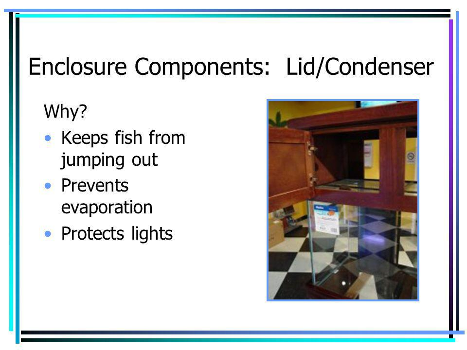Enclosure Components: Lid/Condenser Why? Keeps fish from jumping out Prevents evaporation Protects lights