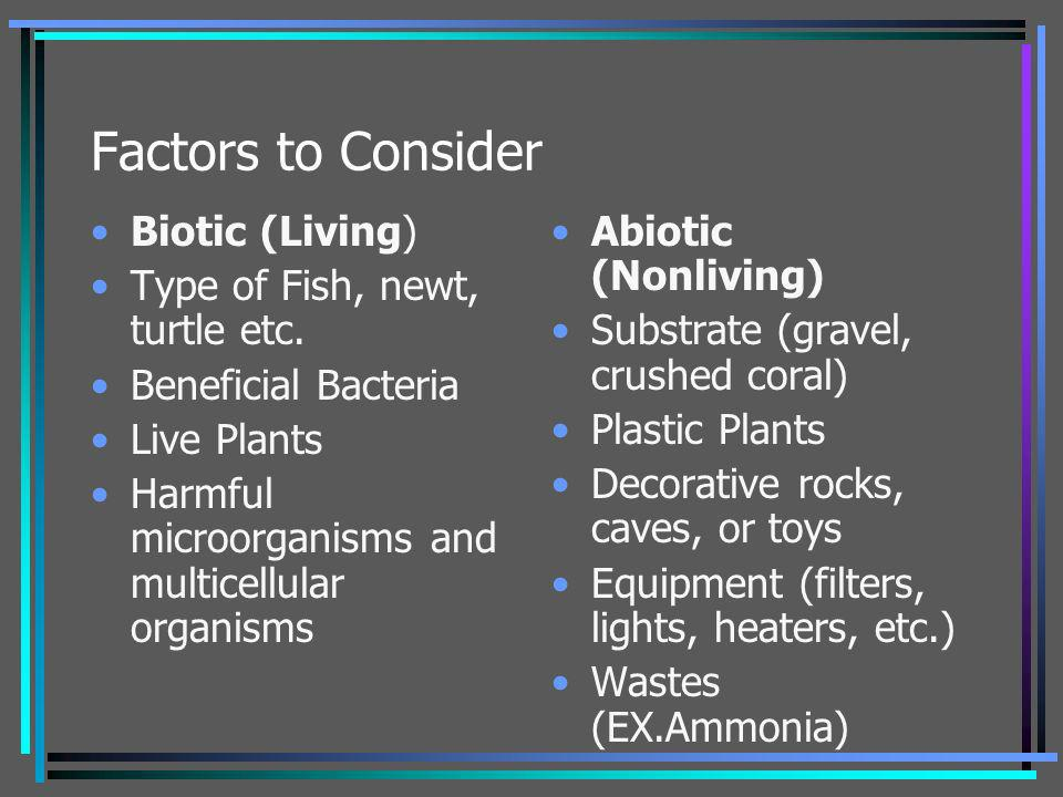 Factors to Consider Biotic (Living) Type of Fish, newt, turtle etc. Beneficial Bacteria Live Plants Harmful microorganisms and multicellular organisms