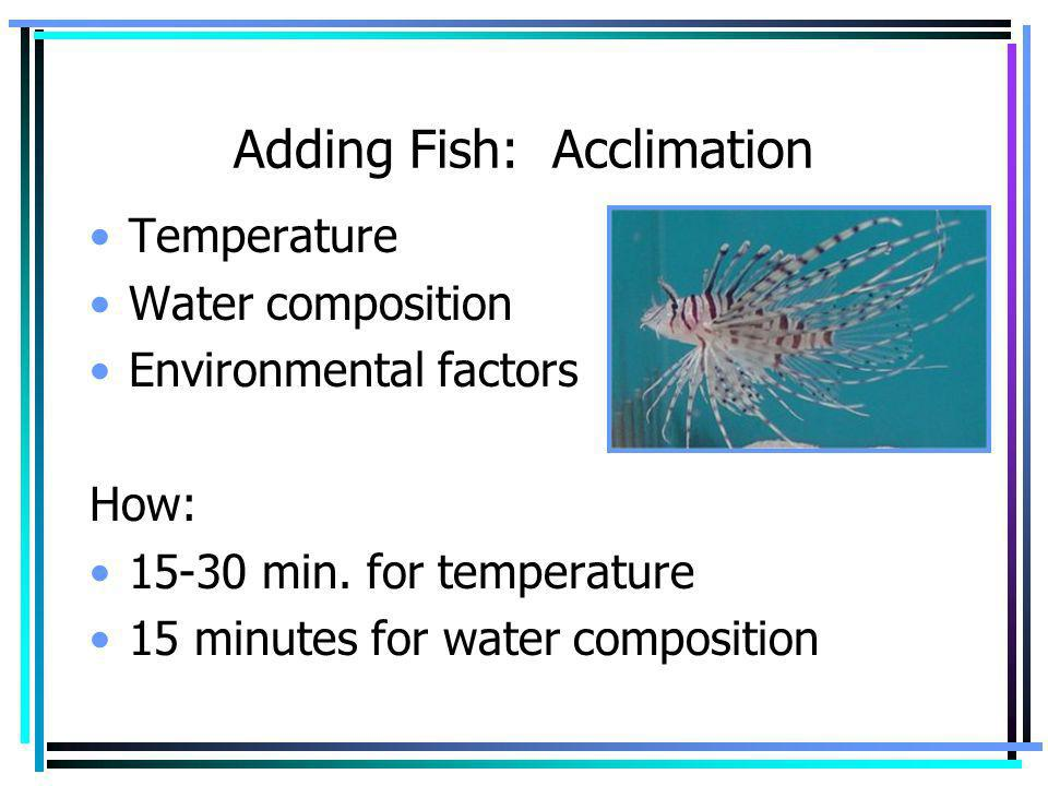 Adding Fish: Acclimation Temperature Water composition Environmental factors How: 15-30 min. for temperature 15 minutes for water composition