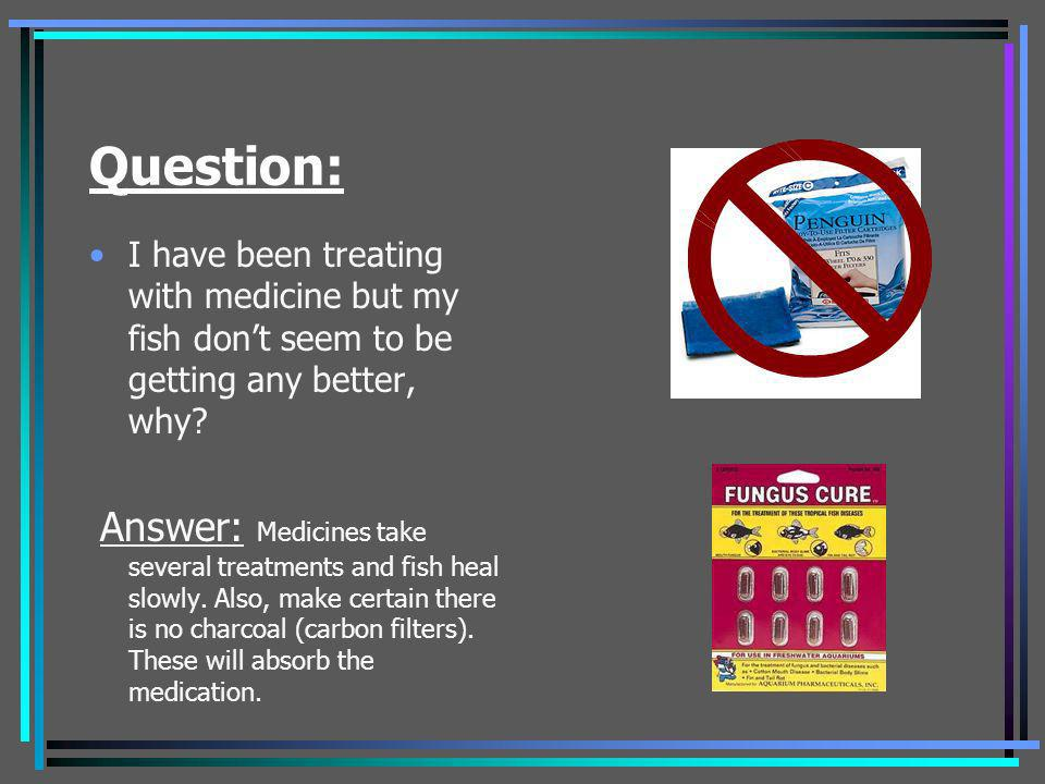 Question: I have been treating with medicine but my fish dont seem to be getting any better, why? Answer: Medicines take several treatments and fish h