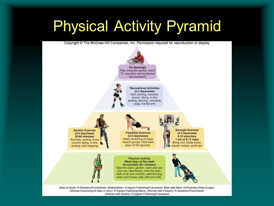 Physical Activity Pyramid Insert figure 11.3