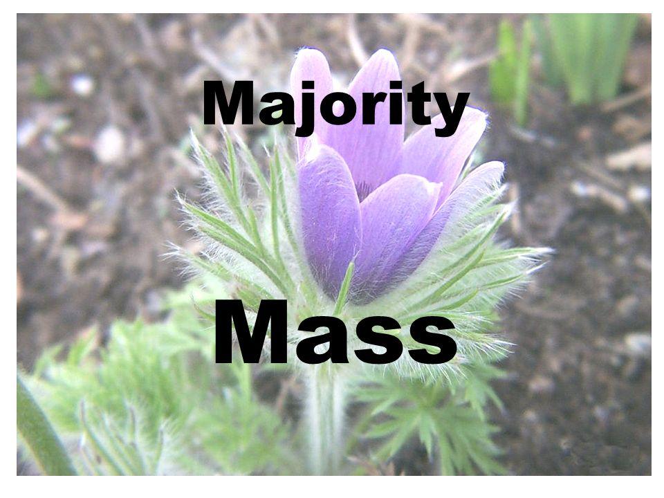 Majority Mass