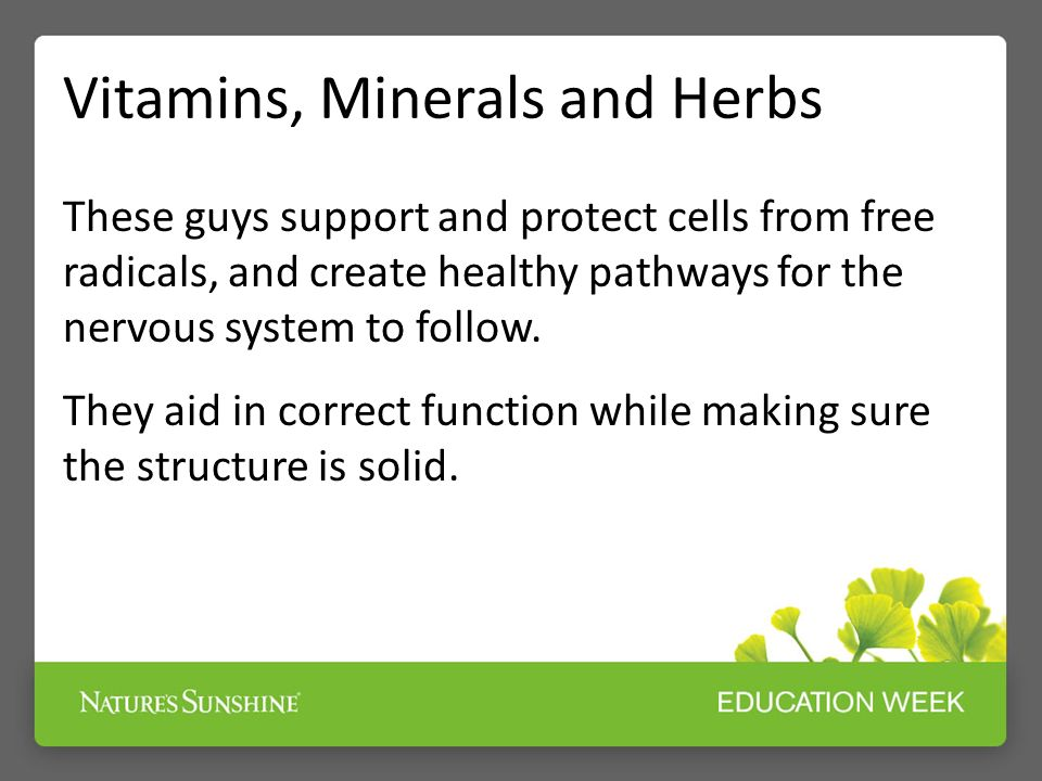 Vitamins, Minerals and Herbs These guys support and protect cells from free radicals, and create healthy pathways for the nervous system to follow.