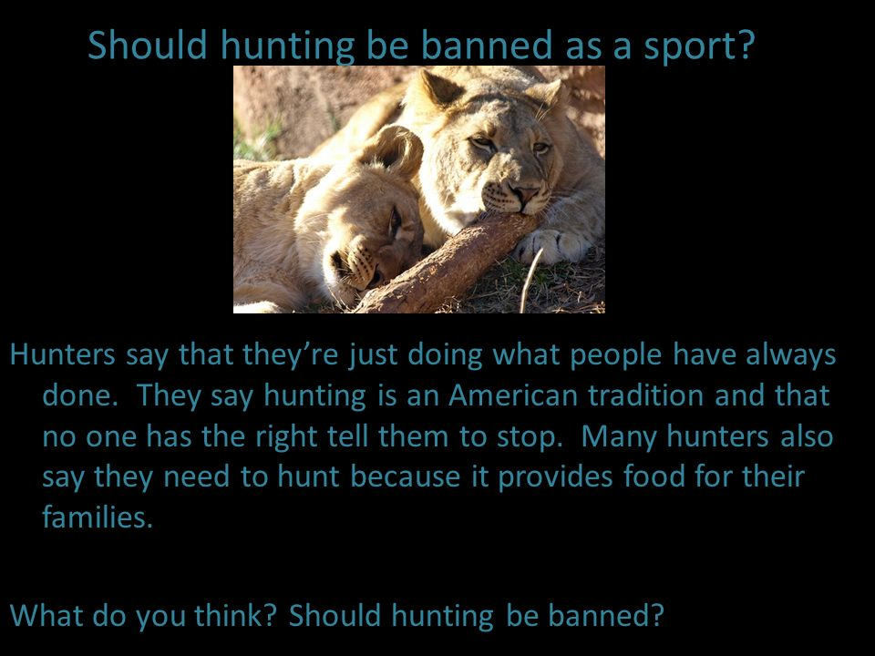 Should hunting be banned as a sport? Hunters say that theyre just doing what people have always done. They say hunting is an American tradition and th