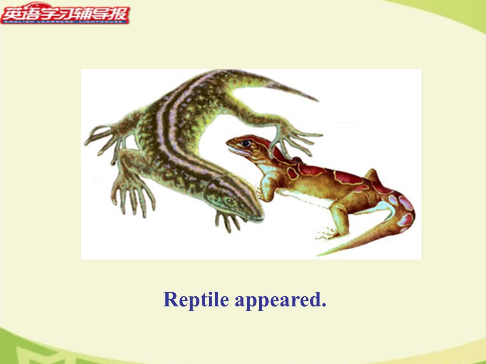 Reptile appeared.