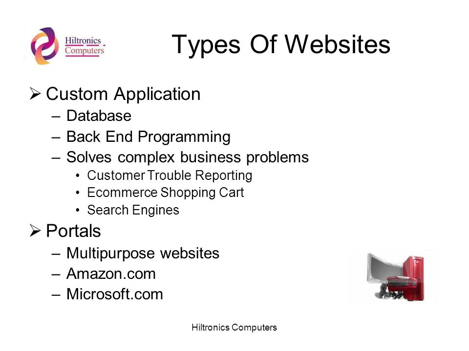 Hiltronics Computers Types Of Websites Custom Application –Database –Back End Programming –Solves complex business problems Customer Trouble Reporting Ecommerce Shopping Cart Search Engines Portals –Multipurpose websites –Amazon.com –Microsoft.com