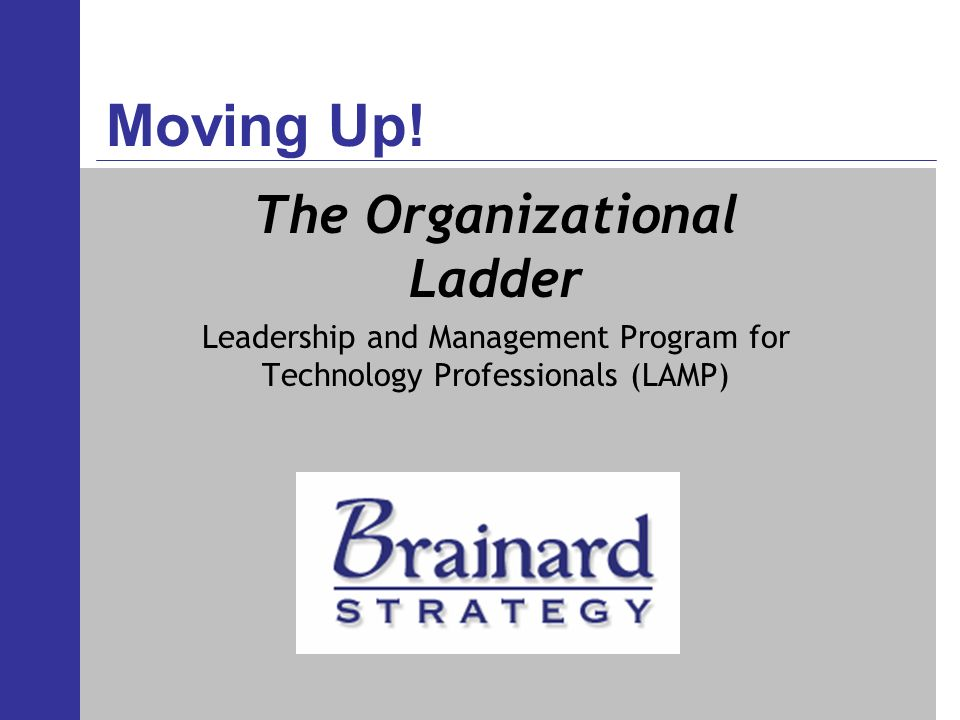 Moving Up! The Organizational Ladder Leadership and Management Program for Technology Professionals (LAMP)