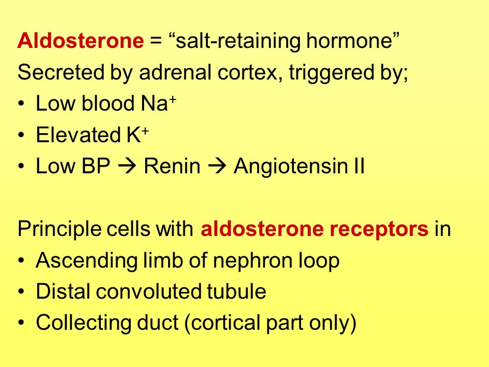 Aldosterone = salt-retaining hormone Secreted by adrenal cortex, triggered by; Low blood Na + Elevated K + Low BP Renin Angiotensin II Principle cells