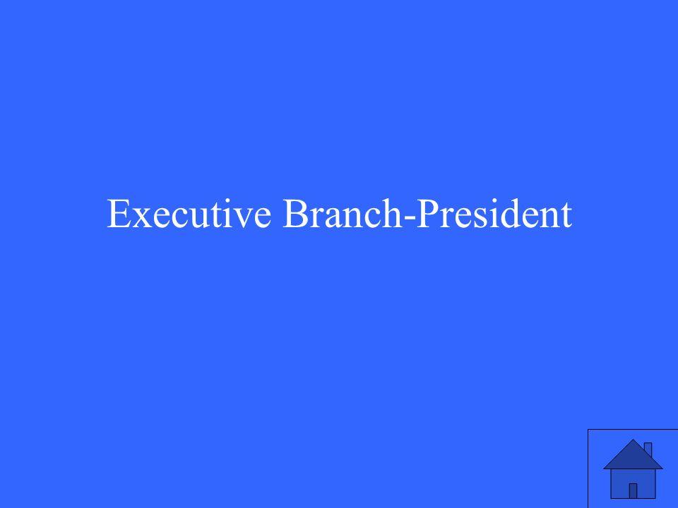 Executive Branch-President