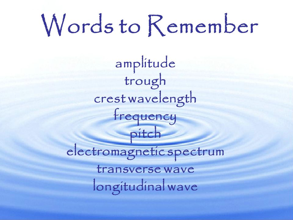 Waves are constantly surrounding us with light, sound, and lots of other types of energy!