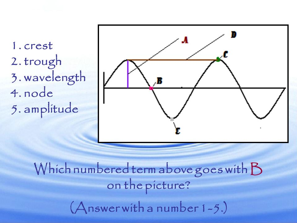 Which numbered term above goes with A on the picture? (Answer with a number 1-5.) 1. crest 2. trough 3. wavelength 4. node 5. amplitude