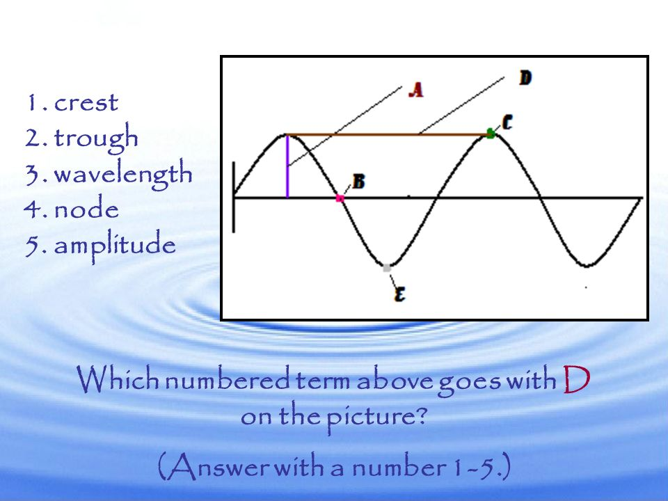 Which numbered term above goes with C on the picture? (Answer with a number 1-5.) 1. crest 2. trough 3. wavelength 4. node 5. amplitude