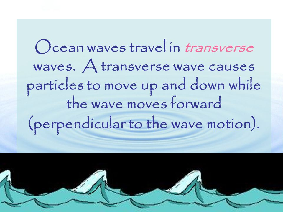 Which of the following is NOT true.Sound waves A: are compression waves.