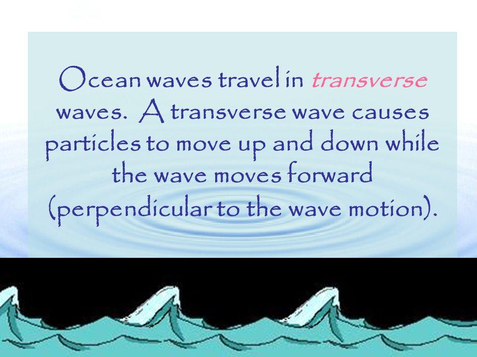 Ocean waves travel in transverse waves.