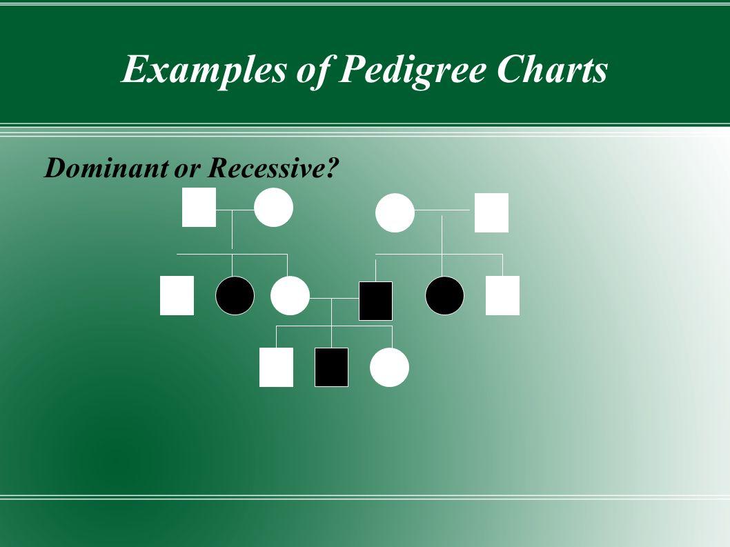 Examples of Pedigree Charts Dominant or Recessive?