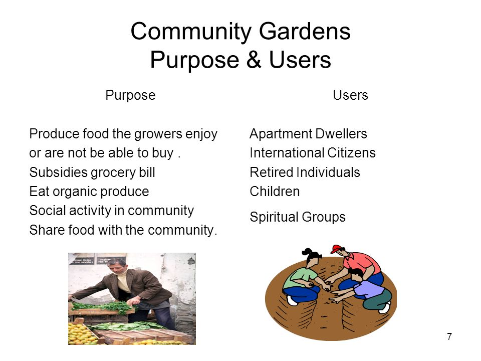 7 Community Gardens Purpose & Users Purpose Produce food the growers enjoy or are not be able to buy. Subsidies grocery bill Eat organic produce Socia