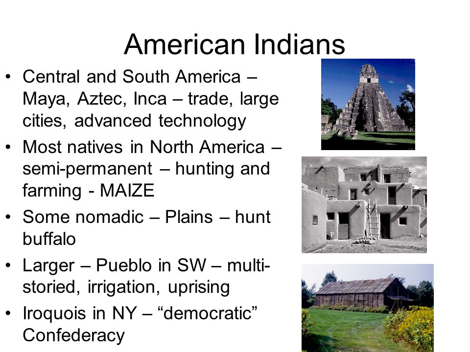 comparisoncontrast between american indians essay Comparison between african and american cultures our culture has advanced so far and fast in the last decade the thing that has advanced our culture most is the technology we have our technology has produced us with many new products and entertainment that we really enjoy but don't actually necessarily need the next few paragraphs will.