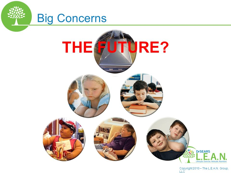 Copyright 2010 – The L.E.A.N. Group, LLC THE FUTURE? Big Concerns