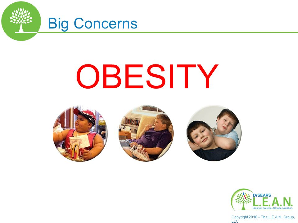 Copyright 2010 – The L.E.A.N. Group, LLC Big Concerns OBESITY