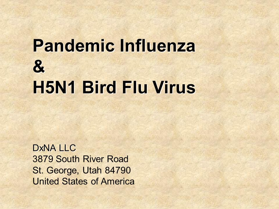 Pandemic Influenza & H5N1 Bird Flu Virus DxNA LLC 3879 South River Road St.