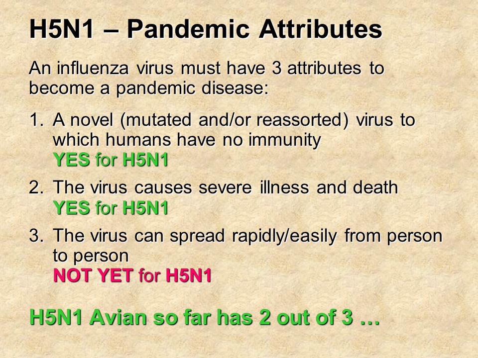 H5N1 – Pandemic Attributes 1.A novel (mutated and/or reassorted) virus to which humans have no immunity YES for H5N1 2.The virus causes severe illness and death YES for H5N1 3.The virus can spread rapidly/easily from person to person NOT YET for H5N1 H5N1 Avian so far has 2 out of 3 … An influenza virus must have 3 attributes to become a pandemic disease: