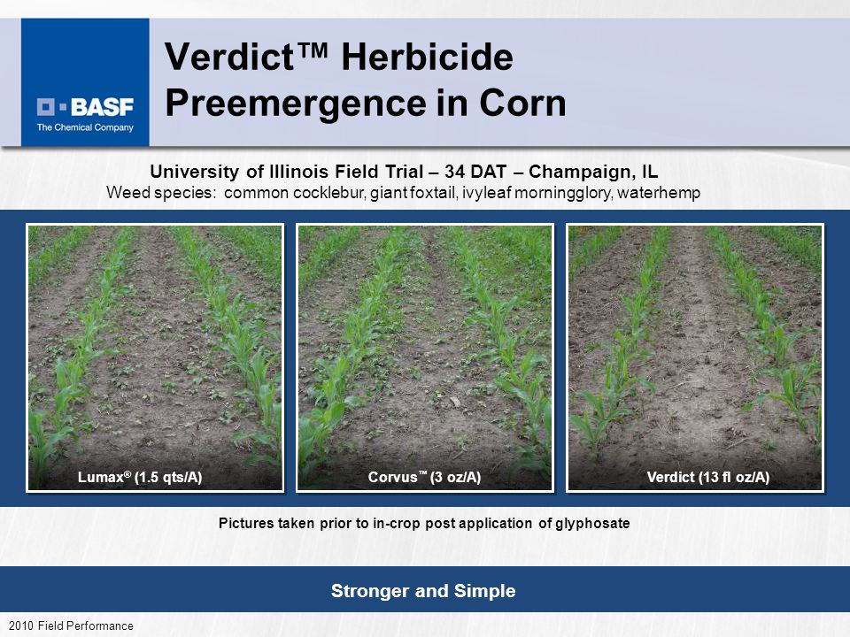 Verdict Herbicide Preemergence in Corn Stronger and Simple 2010 Field Performance Verdict (13 fl oz/A)Lumax ® (1.5 qts/A)Corvus (3 oz/A) University of Illinois Field Trial – 34 DAT – Champaign, IL Weed species: common cocklebur, giant foxtail, ivyleaf morningglory, waterhemp Pictures taken prior to in-crop post application of glyphosate