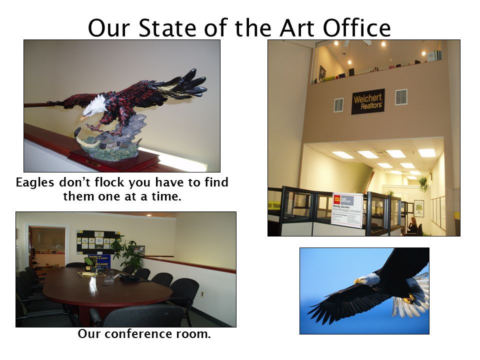 Our State of the Art Office Eagles dont flock you have to find them one at a time.