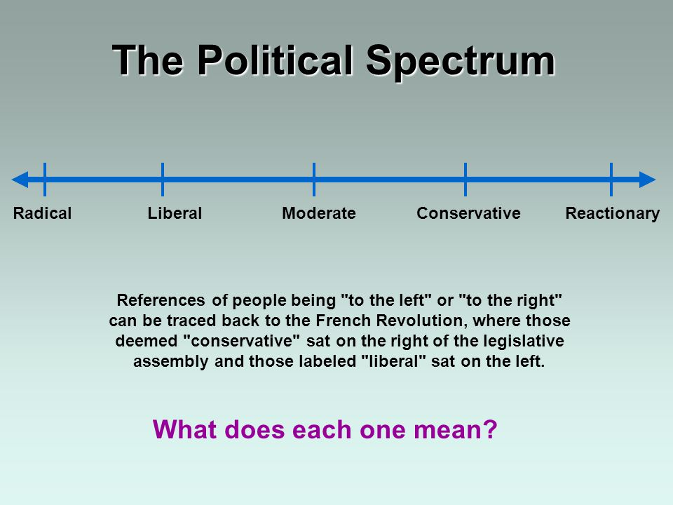 RadicalLiberalModerateConservative Reactionary The Political Spectrum What does each one mean? References of people being