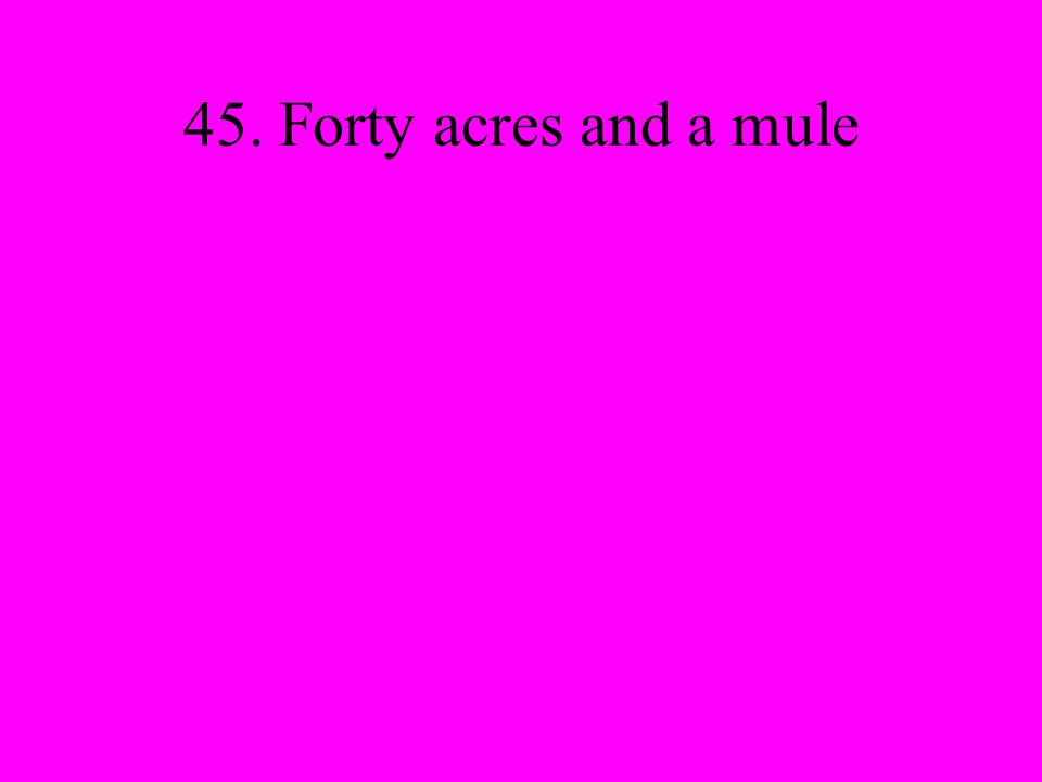 45. Forty acres and a mule