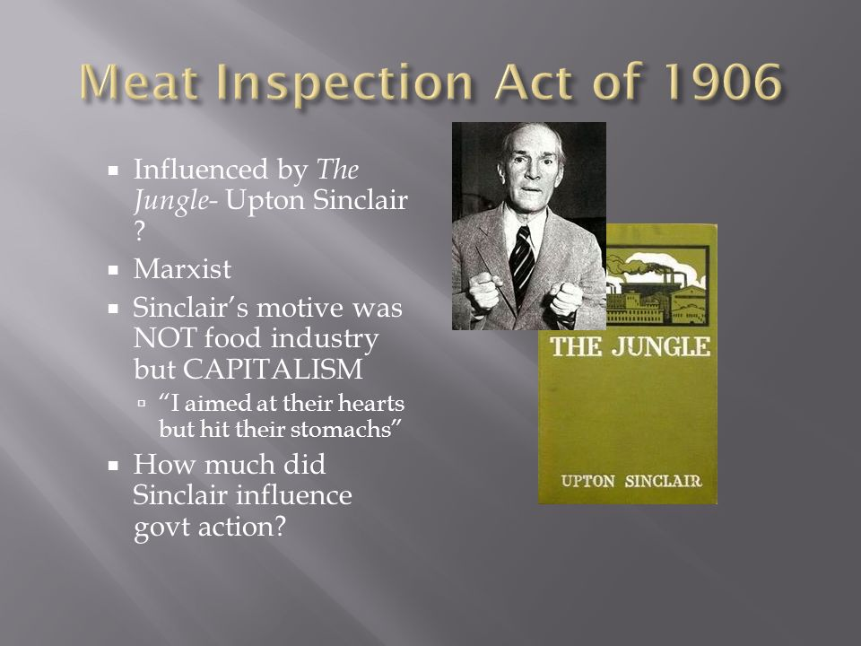 Influenced by The Jungle- Upton Sinclair .