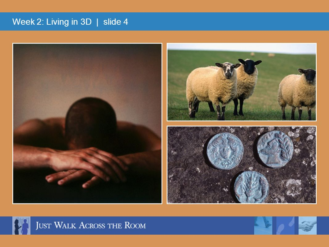 Week 2: Living in 3D   slide 4