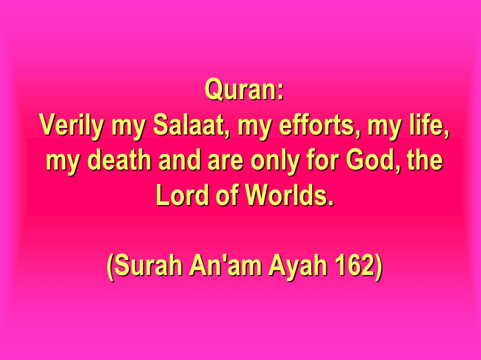 Quran: Verily my Salaat, my efforts, my life, my death and are only for God, the Lord of Worlds. (Surah An'am Ayah 162)