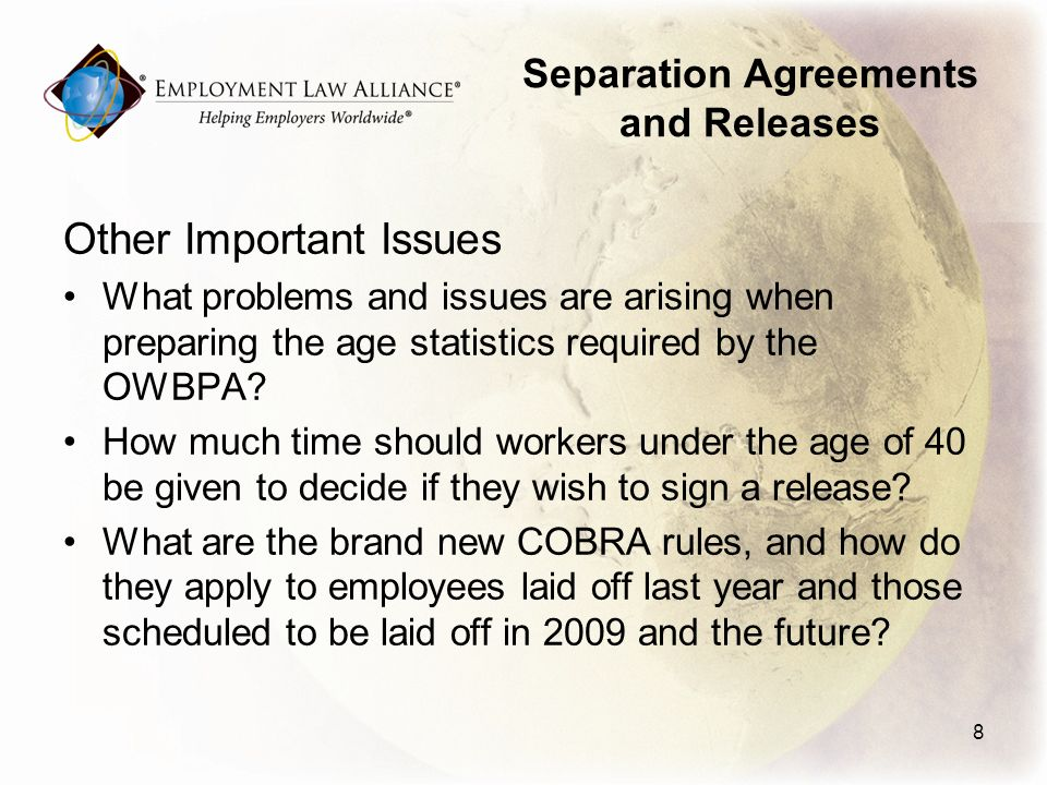 Separation Agreements and Releases Other Important Issues What problems and issues are arising when preparing the age statistics required by the OWBPA.