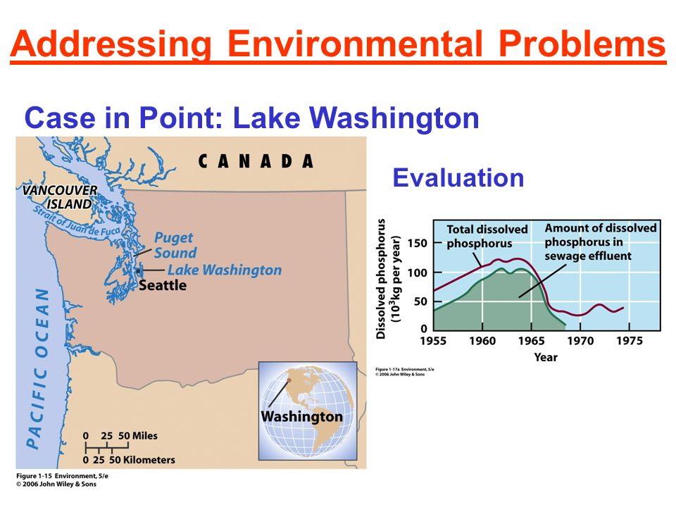 Addressing Environmental Problems Case in Point: Lake Washington Scientific assessment Public education and involvement Political action