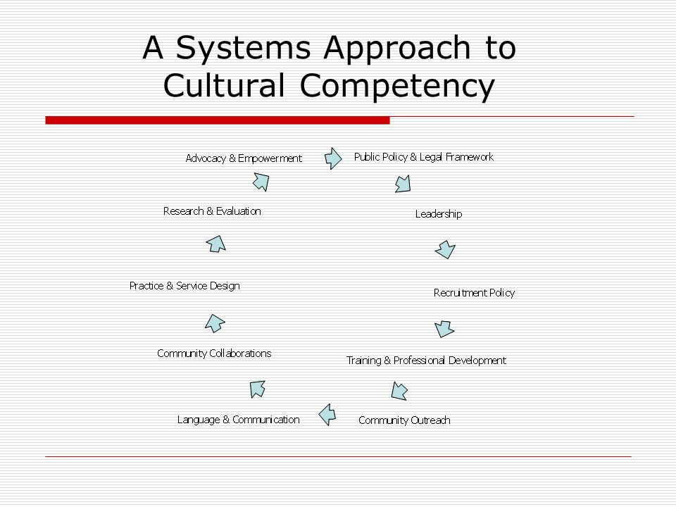 A Systems Approach to Cultural Competency