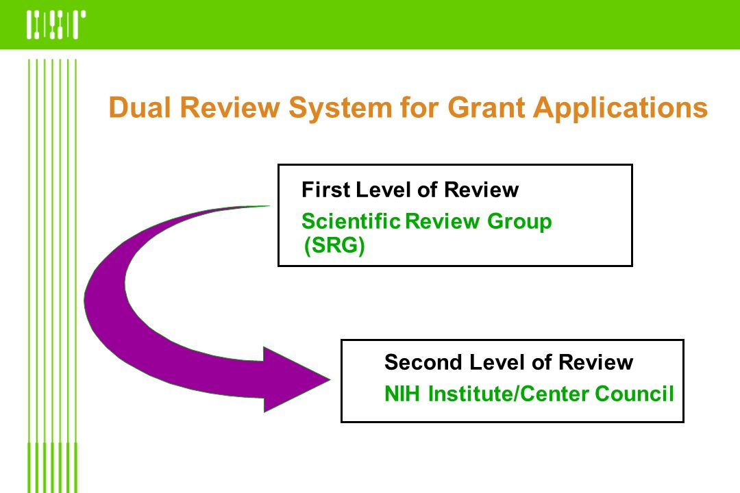 Dual Review System for Grant Applications Second Level of Review NIH Institute/Center Council First Level of Review Scientific Review Group (SRG)